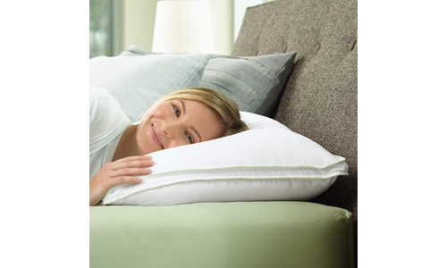 Brookstone BioSense Select Sleep Pillow with Soft Support