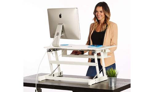 The House of Trade Standing Desk