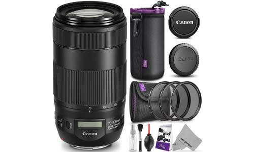 Canon EF 70-300mm f / 4-5.6