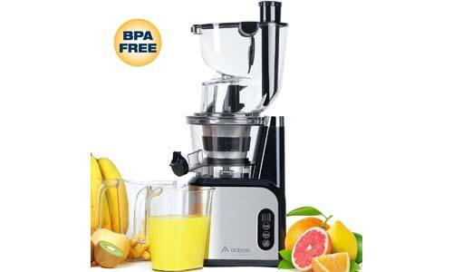 Top 10 Best Budget Masticating Juicer in 2019