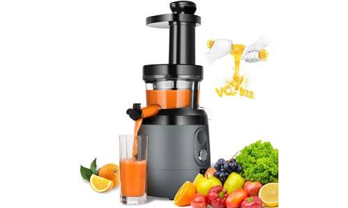 HAYKE Slow Masticating Juicer Extractor